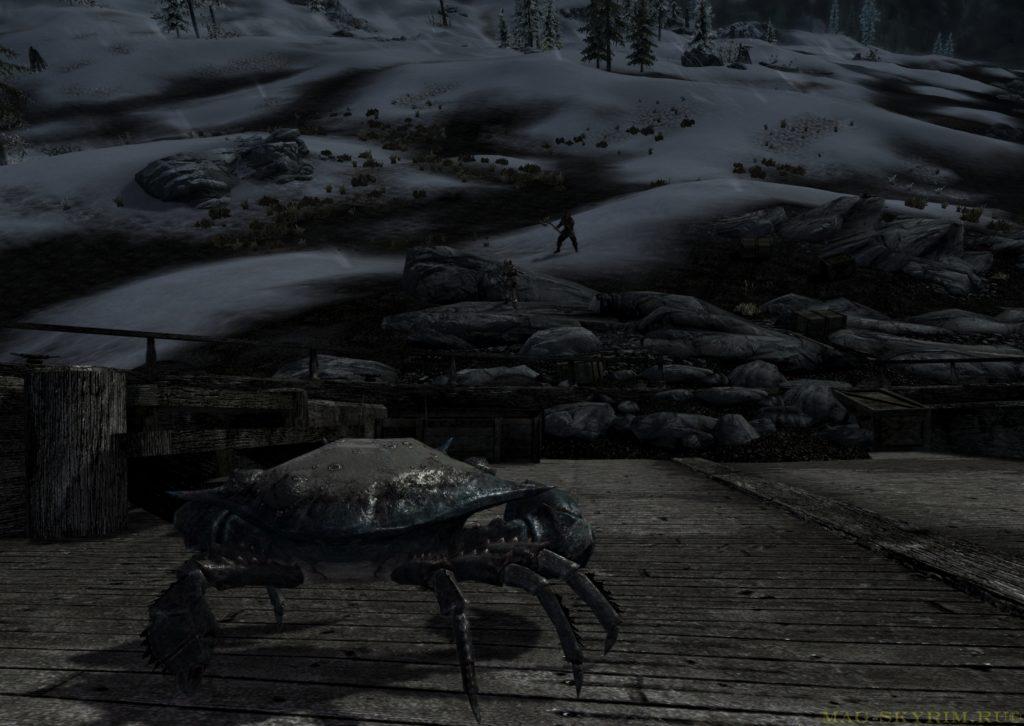 грязевой краб смотрит на пришельцев